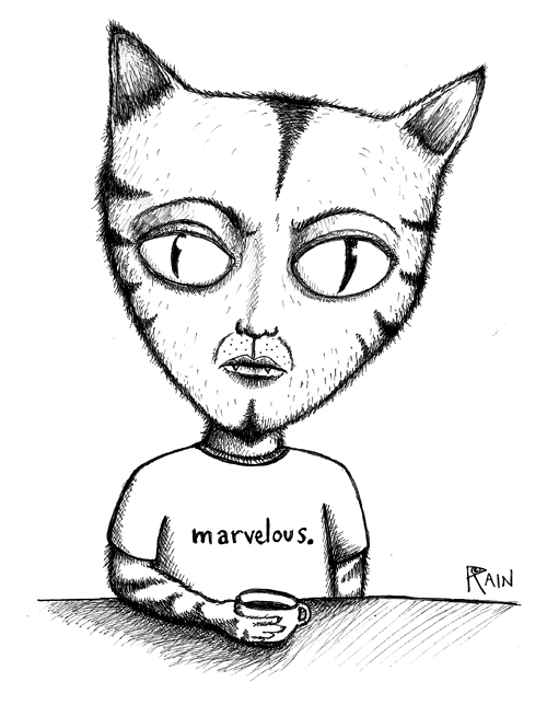 marvelous-cat