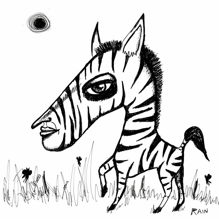 zebra-blackandwhitefield